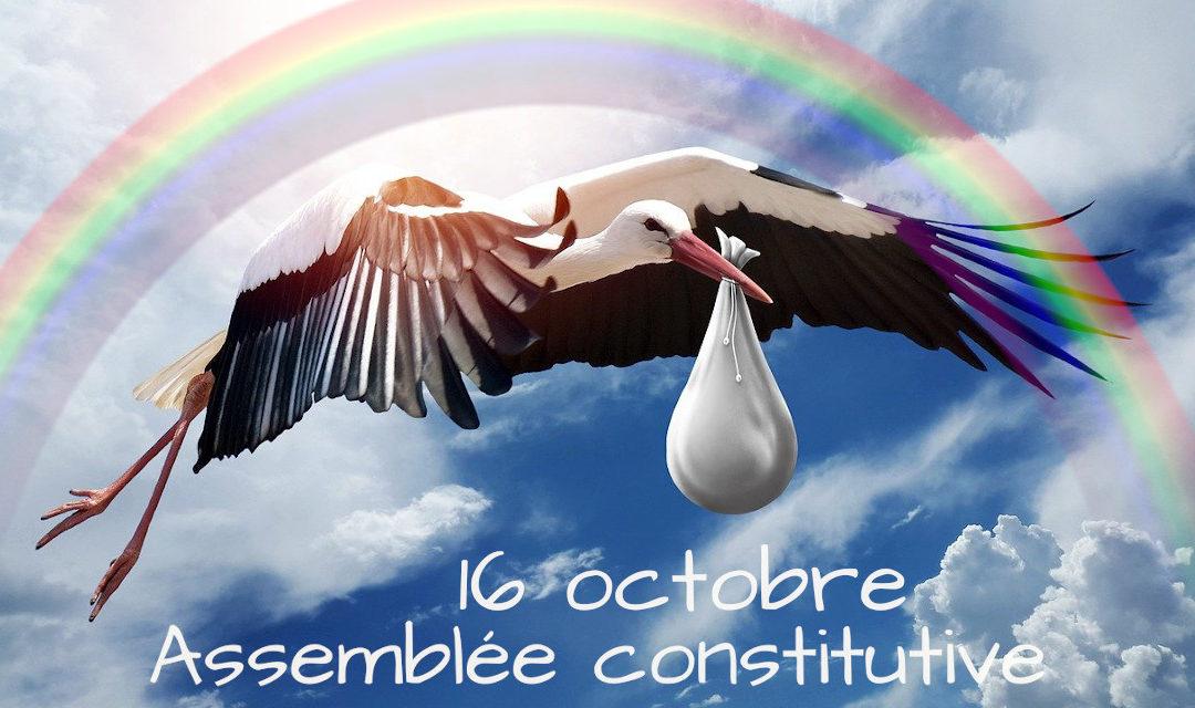 201016_AG_constitutive